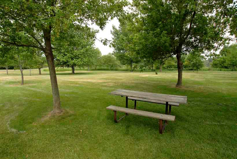 Picnic table in shaded area