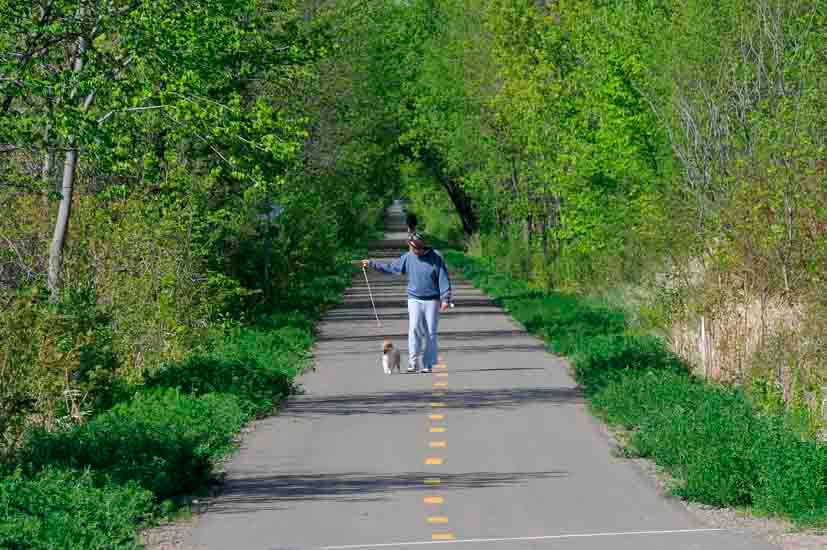 Man walking a dog on a paved trail