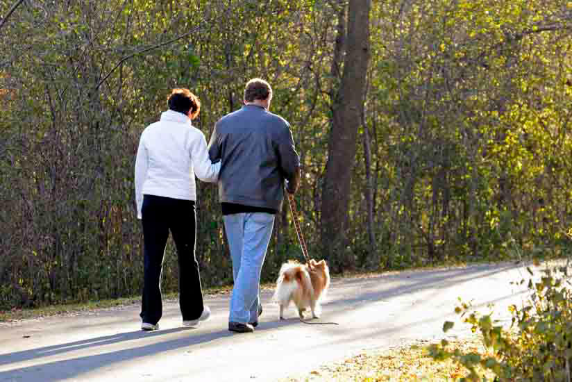 Couple walking dog on wooded trail