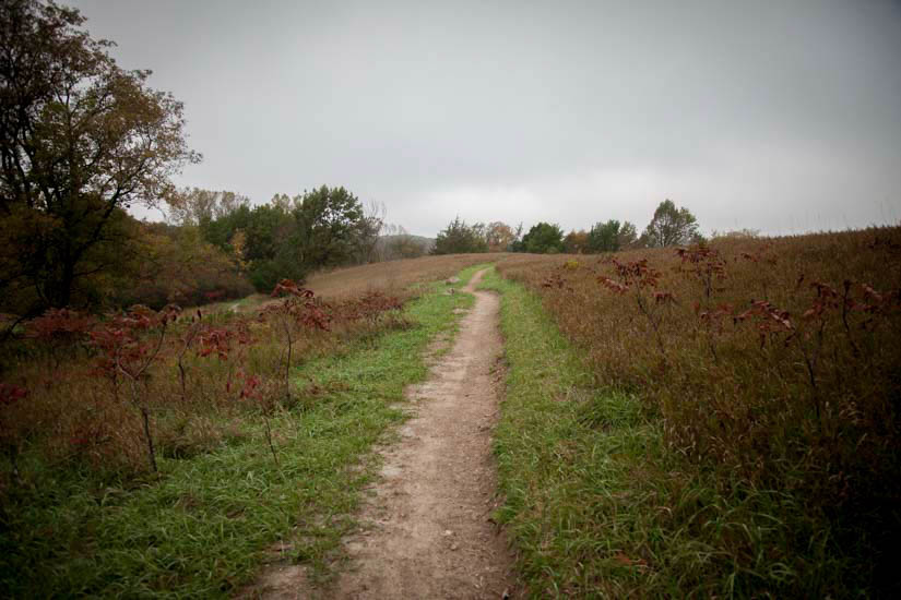 Hiking path in field