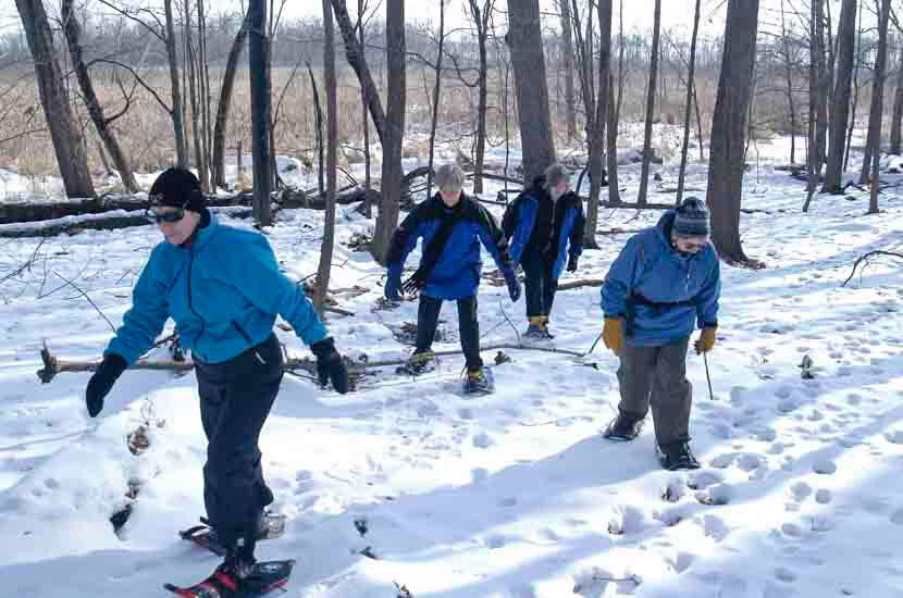 Snowshoers in the woods