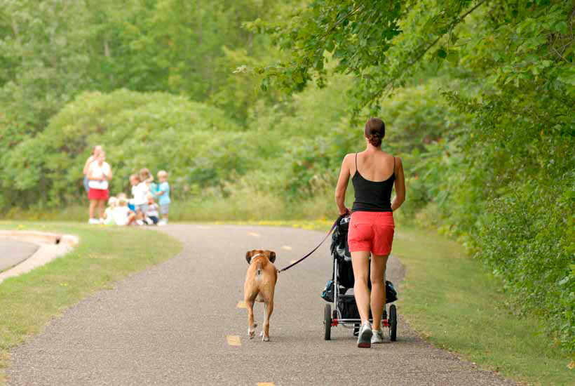 Woman walking with a stroller and dog on leash