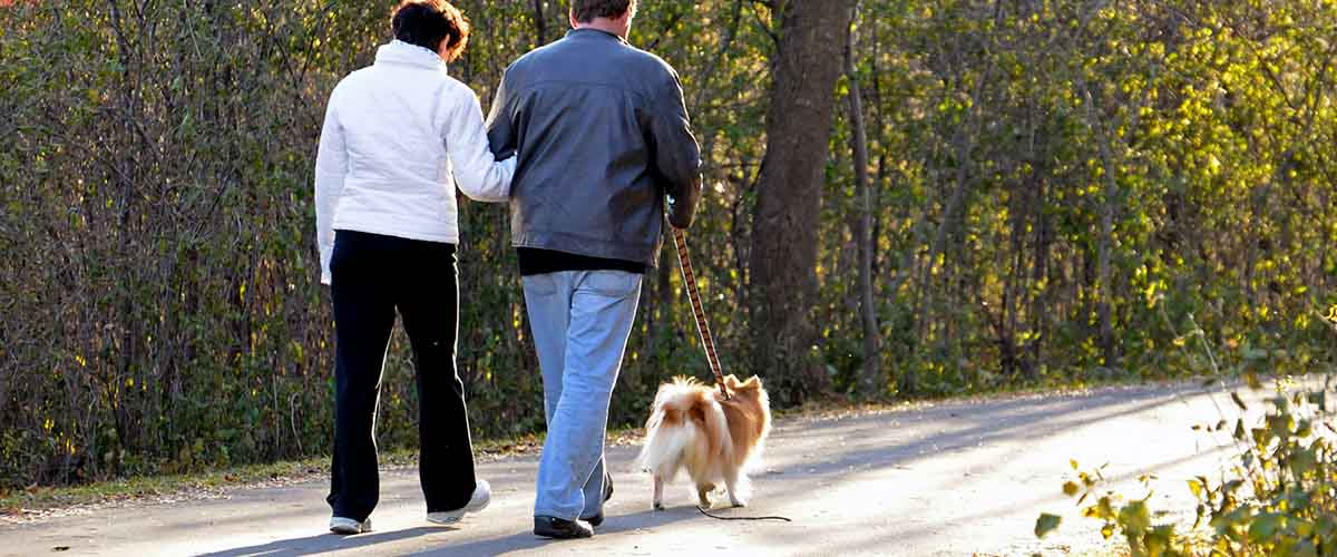 Couple walking dog on paved trail in woods