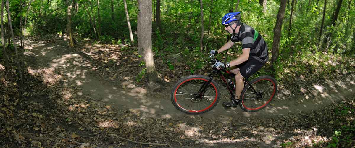 Mountain biker on wooded trail