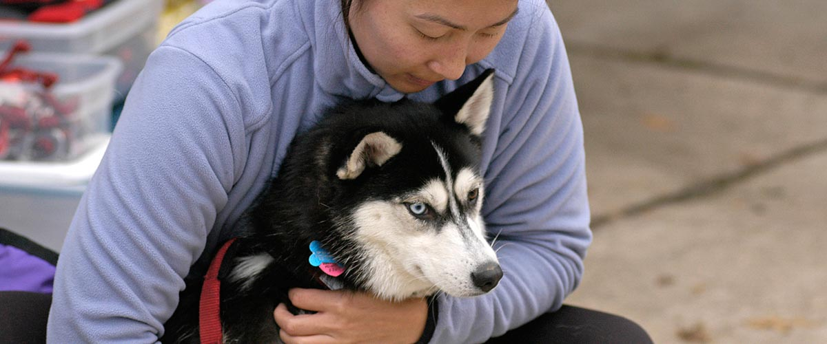 Women hugging sled dog