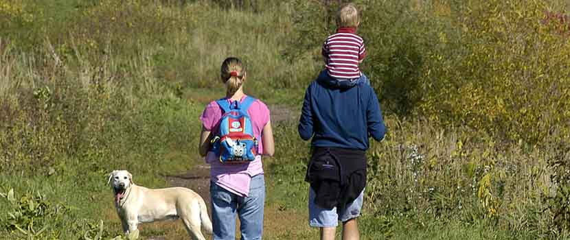 family walking with dog off-leash