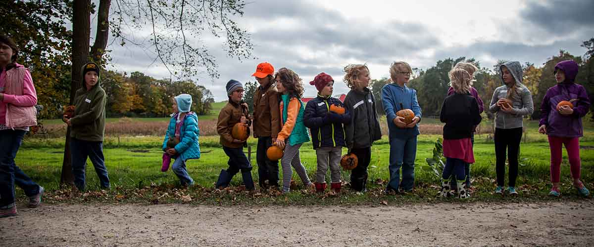 A line of students hold pumpkins