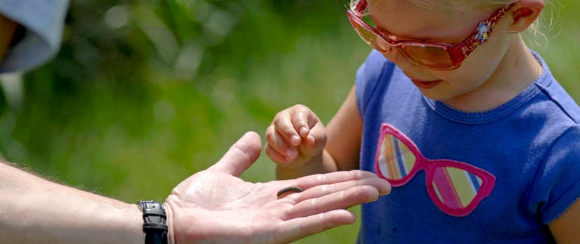 girl touching an insect