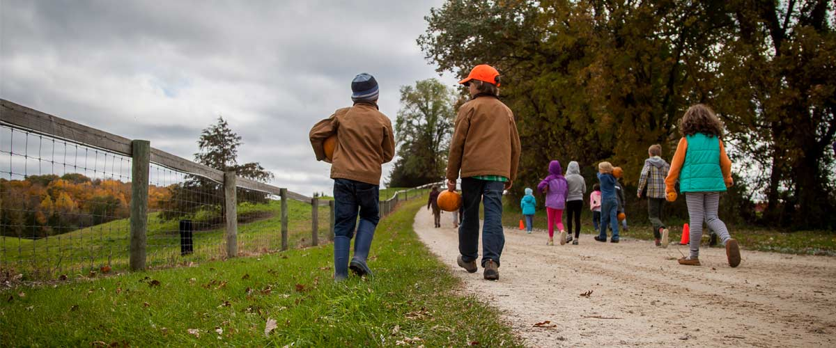 kids walking on a path carrying pumpkins