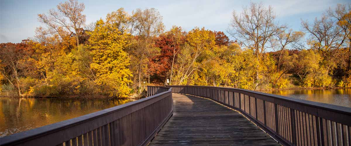 Walkway over water with fall colors