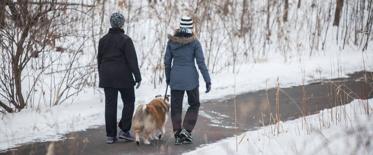 two people walking a dog on a paved trail in the winter