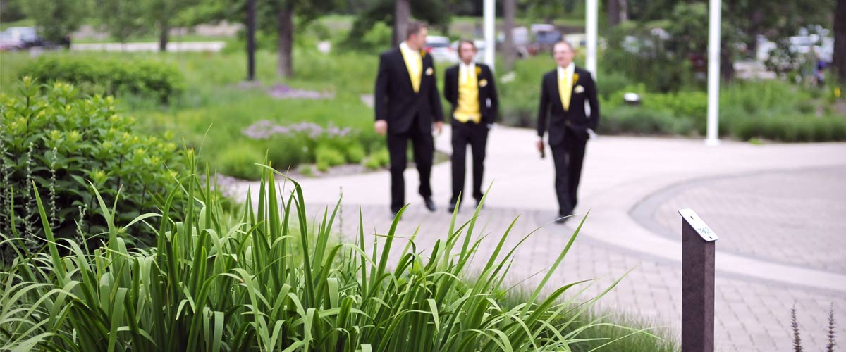 members of a wedding party in a garden
