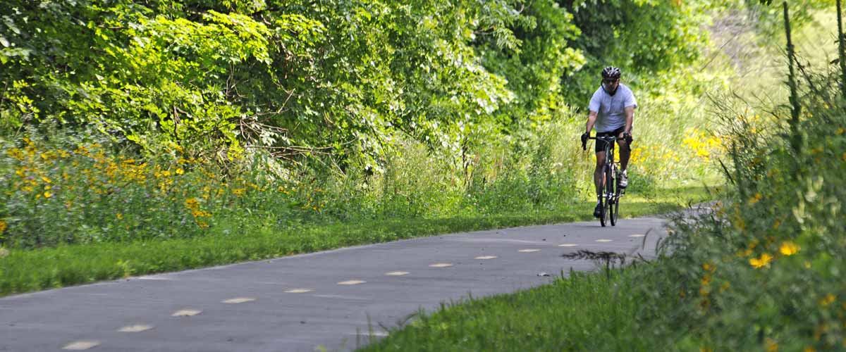 biker on a paved trail through woods