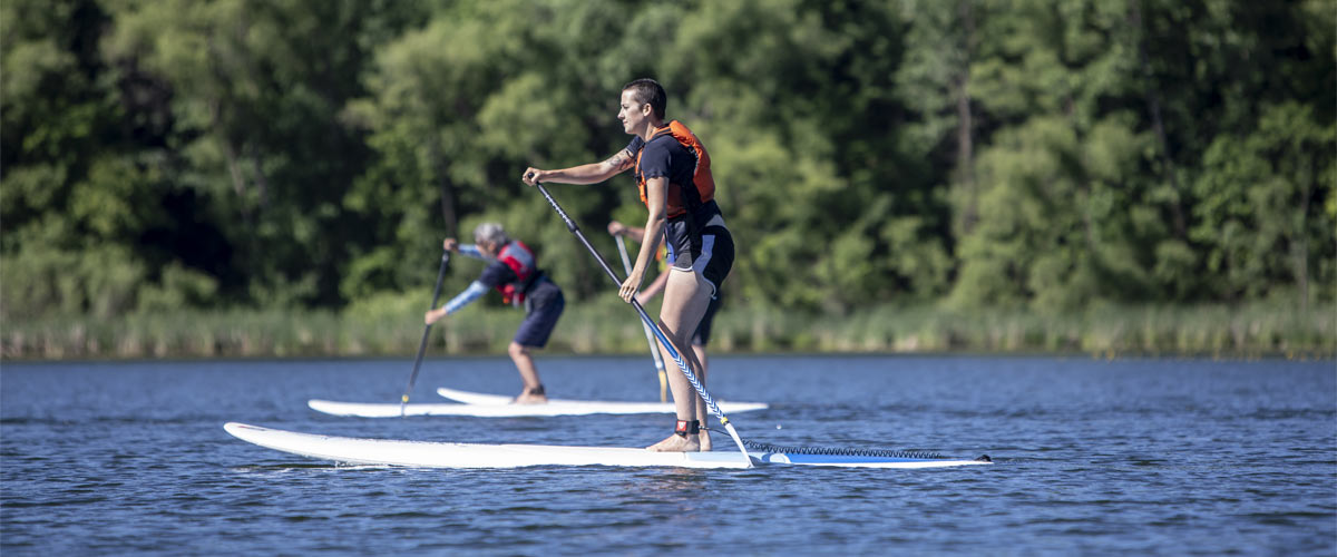 two people on stand up paddleboards