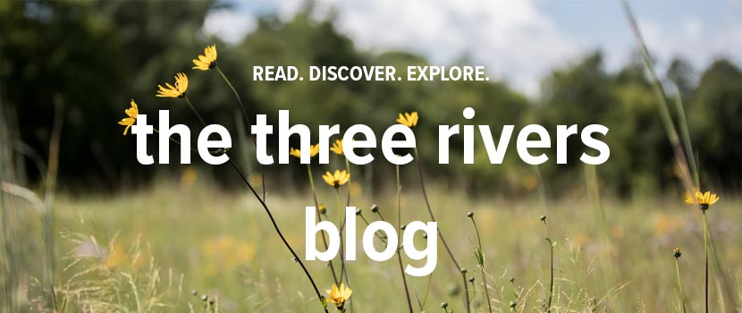 text saying read. discover. explore. The Three Rivers Blog over an image of yellow flowers in a prairie.