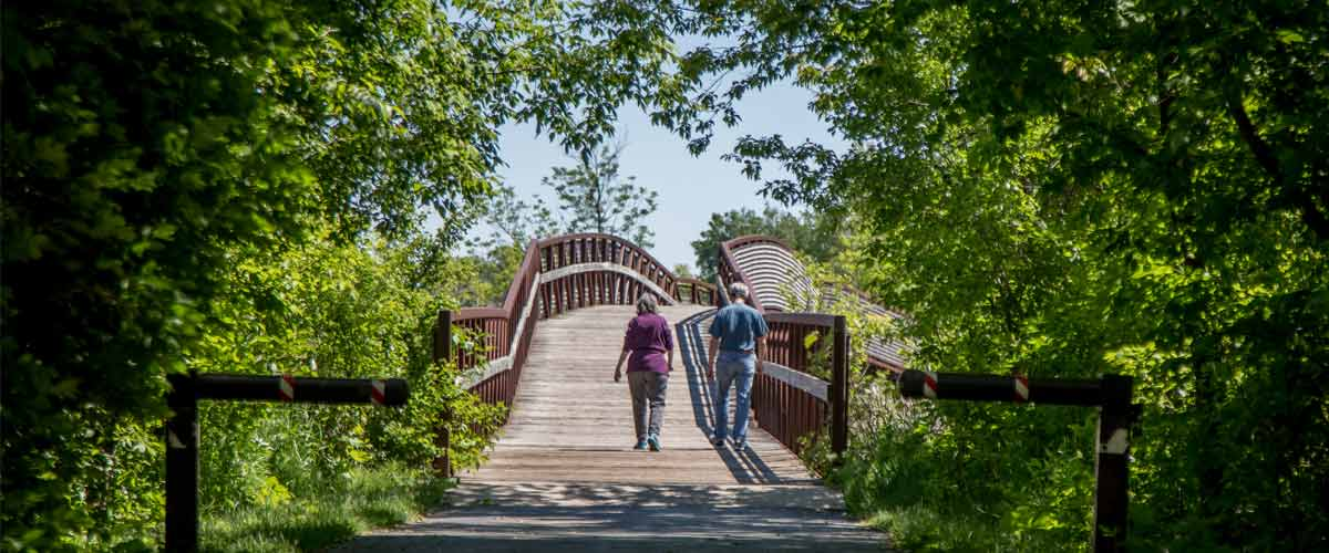 a man and woman walk over a wooden bridge in a wooded area.