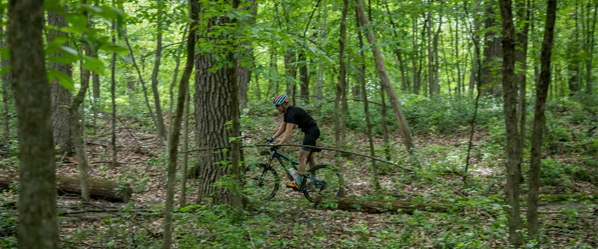 a mountain biker rides through the woods.