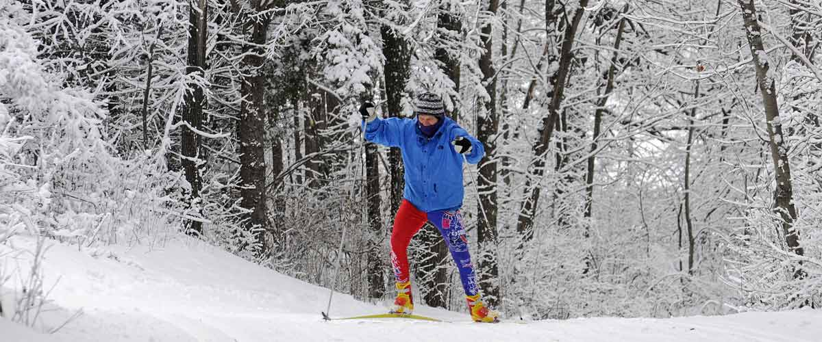 a cross-country skiier climbs a hill on a wooded path covered in snow.