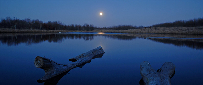 a calm lake at night with a moon overhead and reflecting in the water.