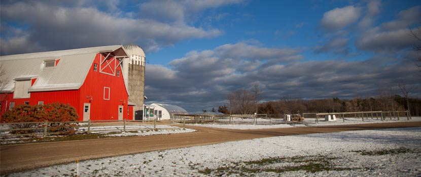 gale woods farm in the winter