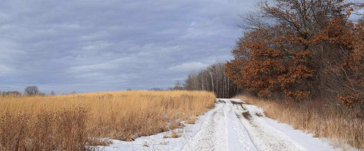 a snow-covered trail with prairie on the left and woods on the right.