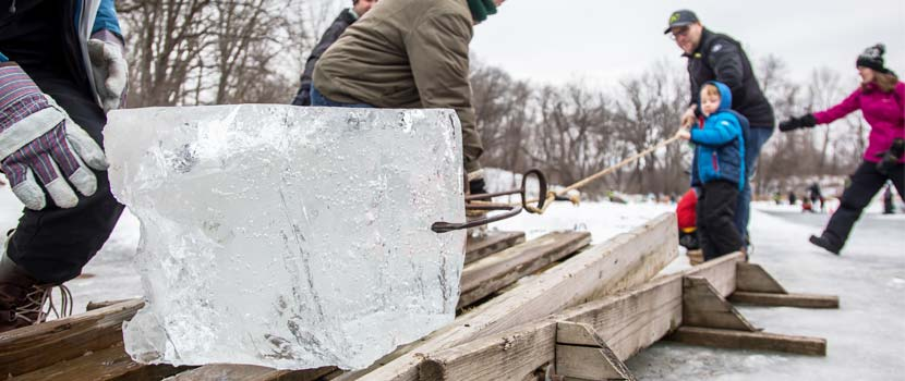 giant block of ice being pulled out of the water onto a pallet for ice harvesting