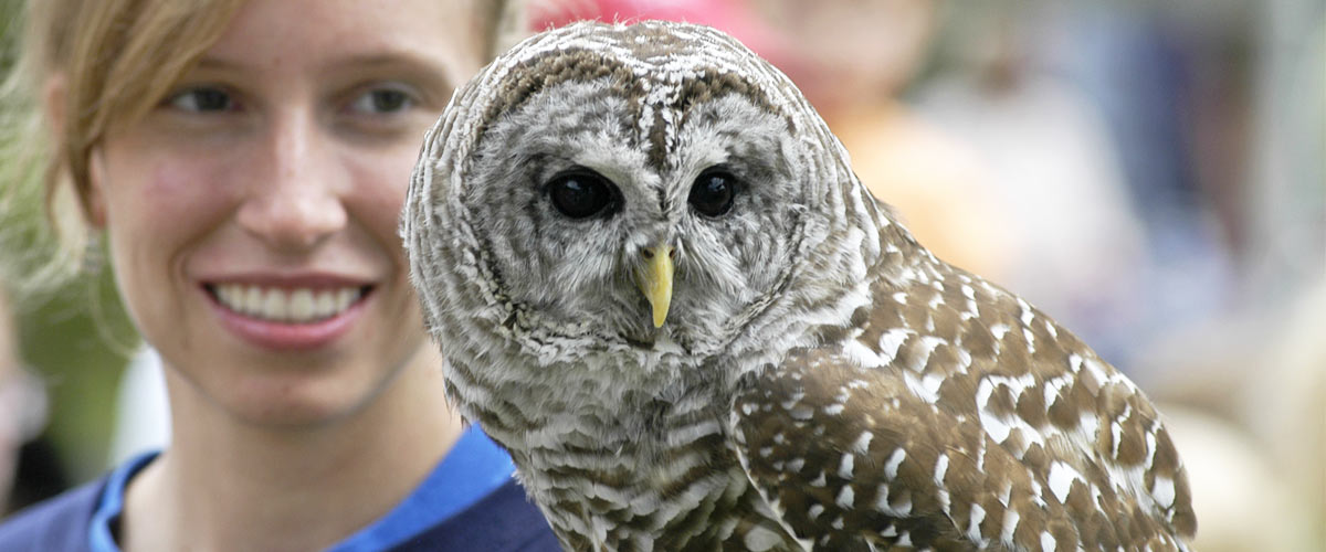 close up photo of a woman holding a barred owl
