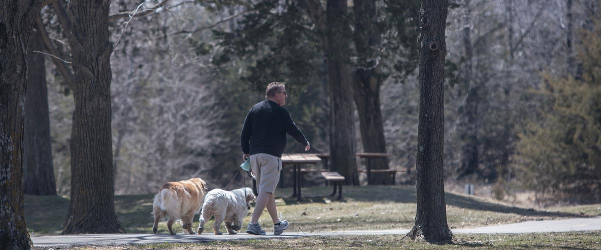 a man walking two dogs through a tree-filled picnic area in the spring.