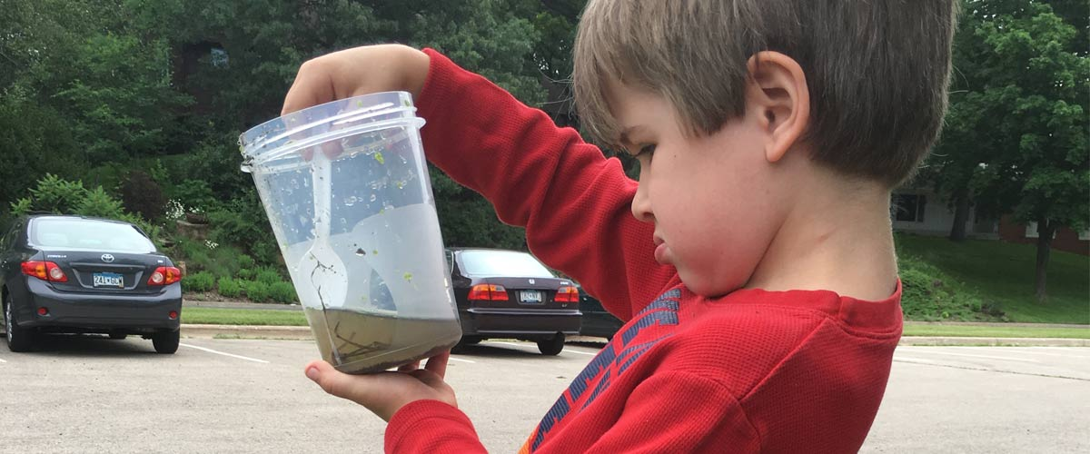 A boy in a red shirt looks at a plastic container full of pond water.