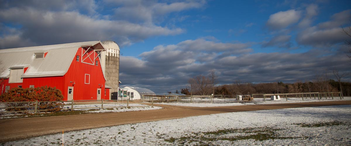 a red barn on a blue-sky day with a light layer of snow on the ground.