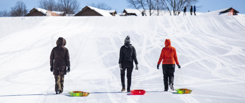 three adults pulling colorful sleds back up a hill.
