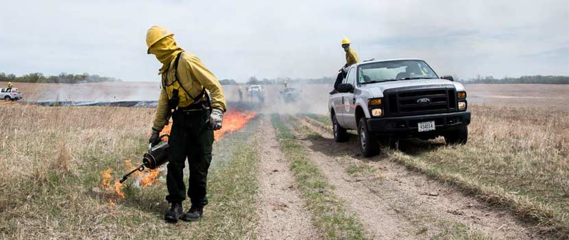 A person in yellow fire-resistant gear lights the edge of a prairie on fire with a metal drip torch. A pickup truck follows behind with a water tank.