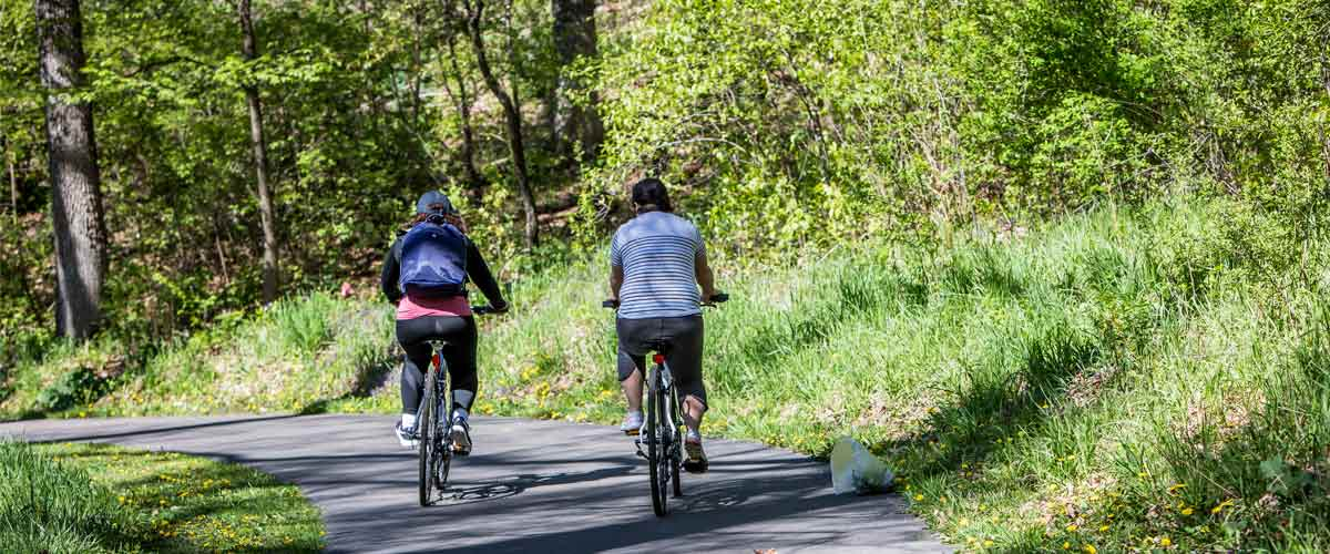 two people ride away from the camera on a paved trail surrounded by grassy area and woods.