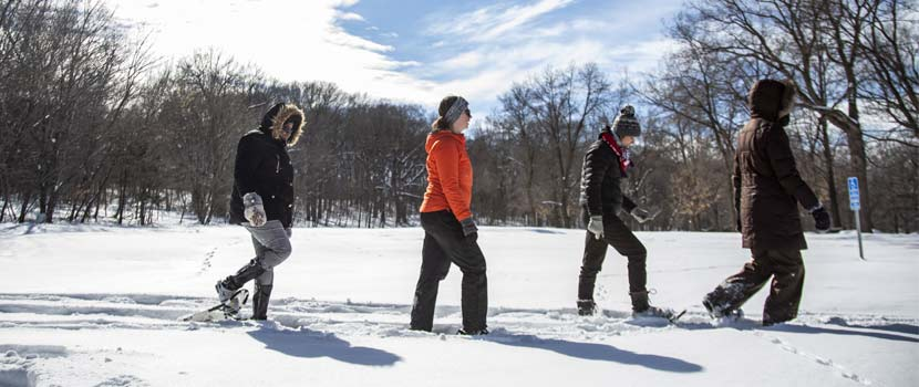 four people snowshoeing on a sunny day.