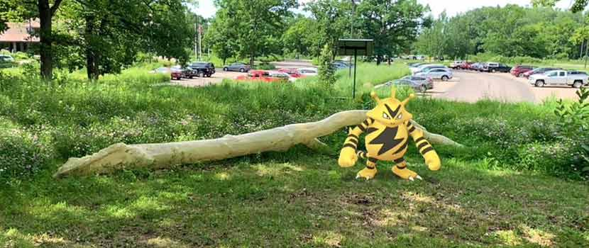 A black and yellow video game character stands next to a log in a park.