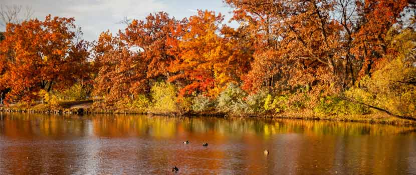 Fall colors reflect on the shores of a lake.