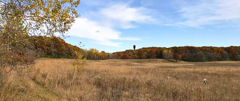 An open prairie is lined by rusty-colored oak trees on a blue-sky day in the fall.