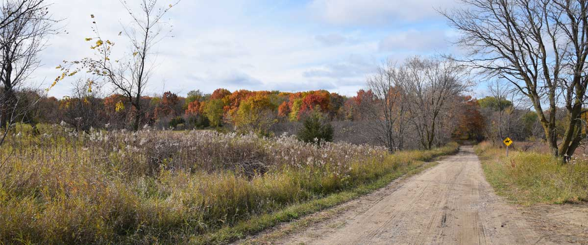 A dirt road cuts through prairie grasses. A stand of colorful fall trees can be seen.