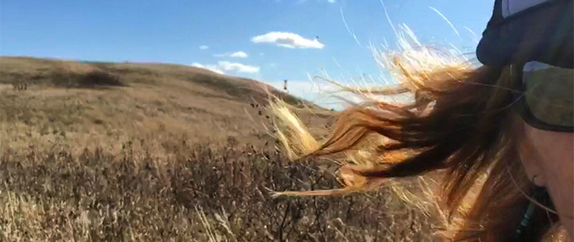 Half of a woman's face. Her hair is blowing in the wind and there is a grassy field behind her.