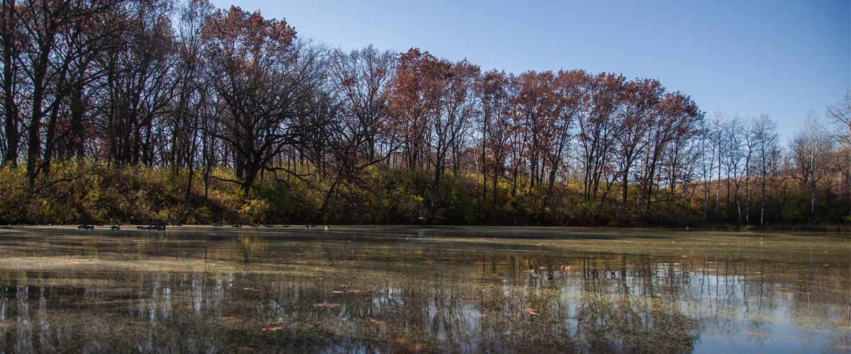 A lake surrounded by trees in late fall.