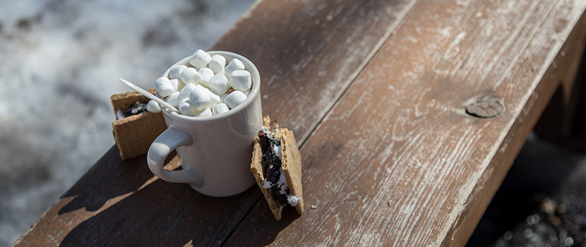s'mores and mug of cocoa