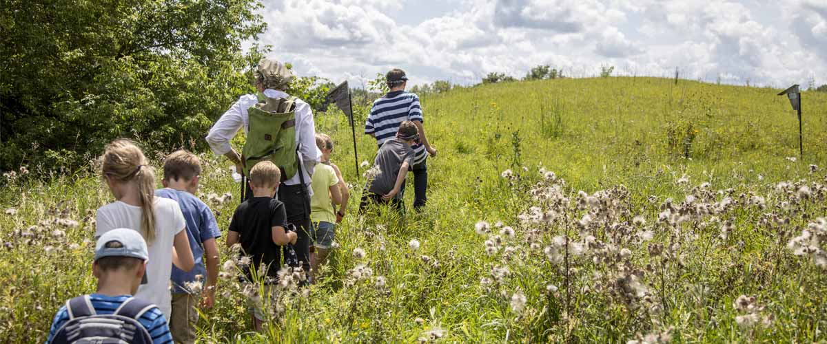 Kids follow an adult into a prairie in the summer.