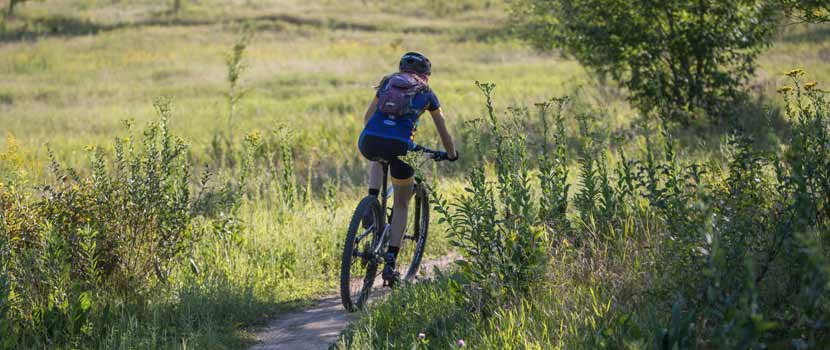 A mountain biker rides on a dirt path through tall grasses.