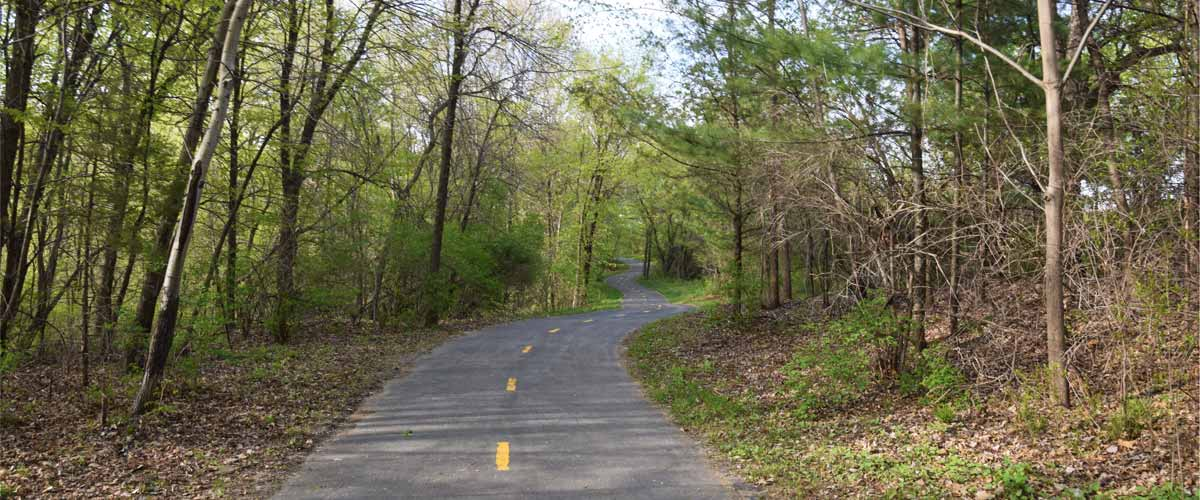 A paved trail winds through the woods.