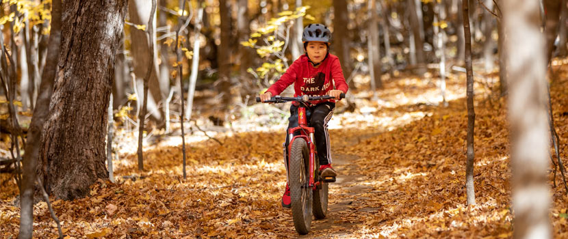 A boy rides a bike through the woods in the fall.