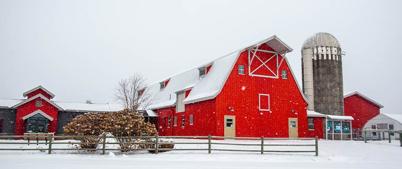 red barn and gray silo at Gale Woods Farm in Minnetrista, Minnesota with a snowy yard and fence in the foreground
