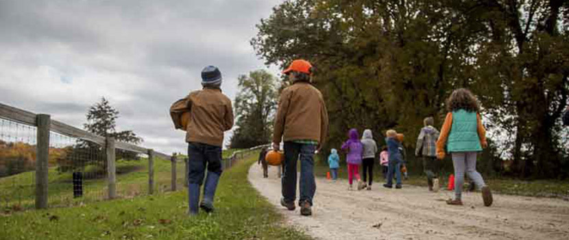 a group of kids walk down a farm road