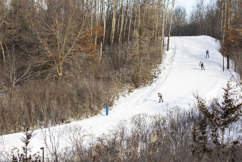 Three cross-country skiers go down a steep hill through the woods.