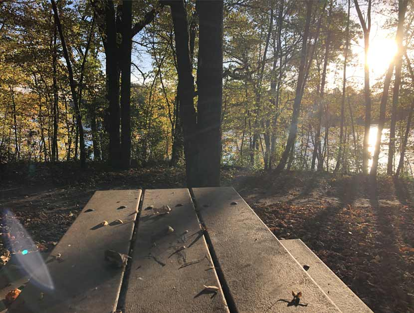 The sunsets over a lake through a stand of trees. A picnic table is in the foreground.