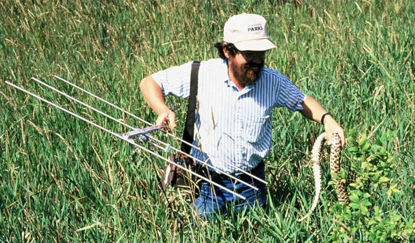 A man standing in tall grass holds a radio transmitter in one hand and a snake in the other.